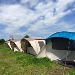 Летний лагерь для детей. Смена в самом разгаре